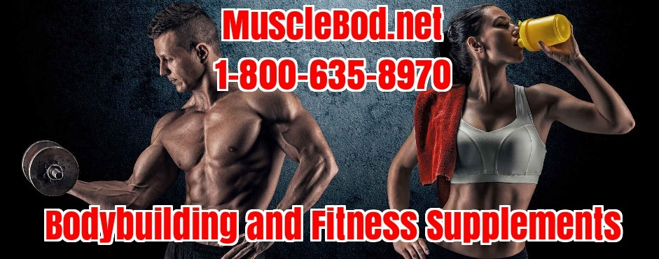 Fitness Bodybuilding Workout Supplements Store